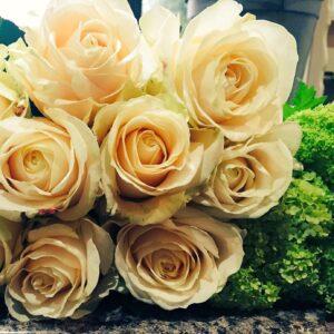 February blog - Roses